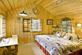 Cabin Interior at Avalanche Ranch Cabins and Hot Springs, The Colorado Vacation Directory