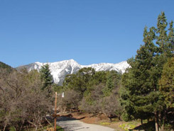 Mountain Views at Cutty's Resort, The Colorado Vacation Directory