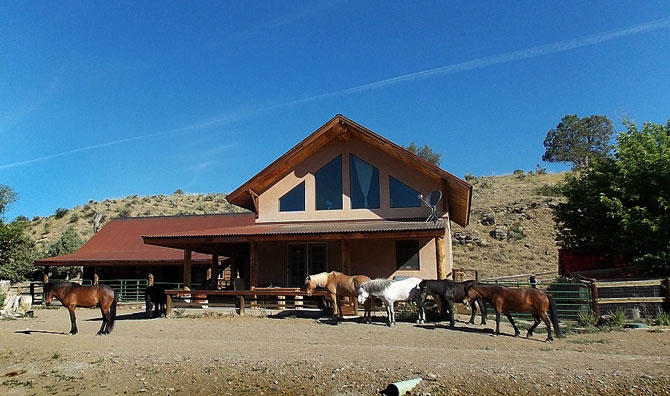 A herd of hourses out front of cabin at Hestar Ranch with Icelandic Horses near Navajo Lake, Colorado