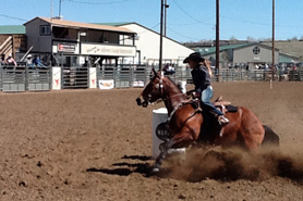 Barrel Racer at the Jefferson County Fairgrounds, Colorado