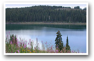 One of many lake on Grand Mesa, Colorado Vacation Directory
