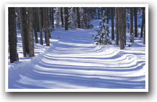 Grand Lake Snowmobile Trails Map Colorado Vacation Directory
