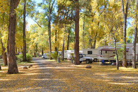 Autumn with yellow leaves at Rio Chama RV Park, Chama, New Mexico