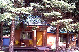 One of Hideout Cabins cavin amings trees located in Allenspark, Colorado