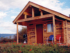 1 of 10 Individual Cabins On 8 Acres at Muddy Creek - The Colorado Vacation Directory