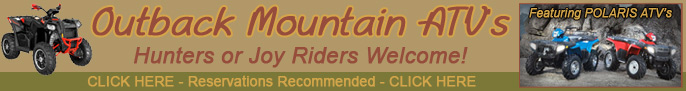Click here for Outback Mountain ATV Rentals, ATV rentals in Pagosa Springs Colorado