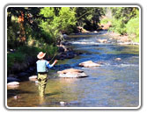 Colorado has some of the best fishing, lake, river, stream, bass or trout Colorado is great fishing country, The Colorado Vacation Directory
