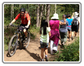 Colorado Mountain Biking Trails