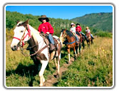 Colorado Horseback Riding and Pack Trips