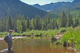 Man fishing in creek with T Bar M Outfitters near Durango, Colorado.
