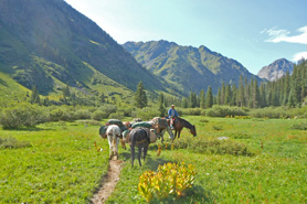 Horses and man on horseback near Emerald Lake. Memorable and scenic horseback excursions in the Rocky Mountains with T Bar M Outfitters near Durango, Colorado.