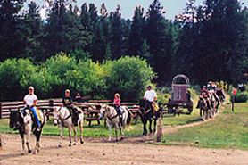 Horseback Riding at Winding River Resort near Grand Lake, Colorado. Family horse trail rides, sleigh rides, chuckwagon suppers. Spend a week vacationing.